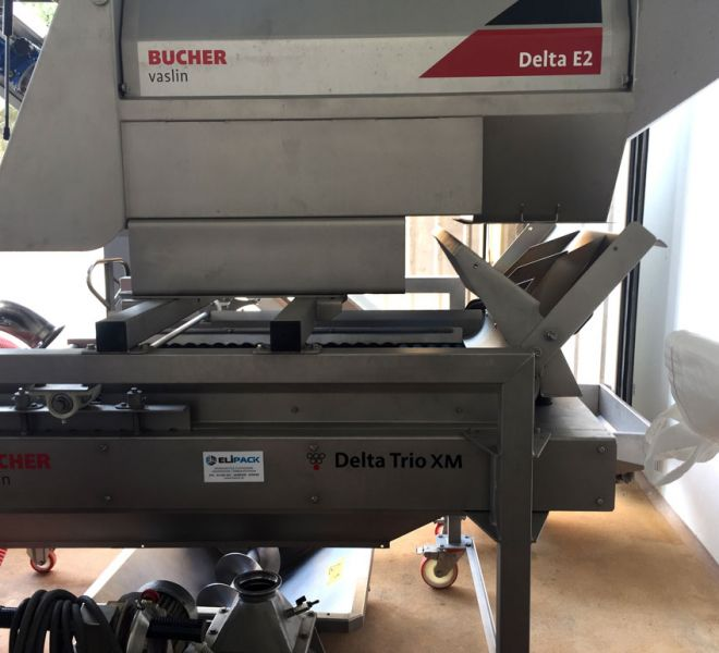 Grapes Destemmer and Sorting Machine